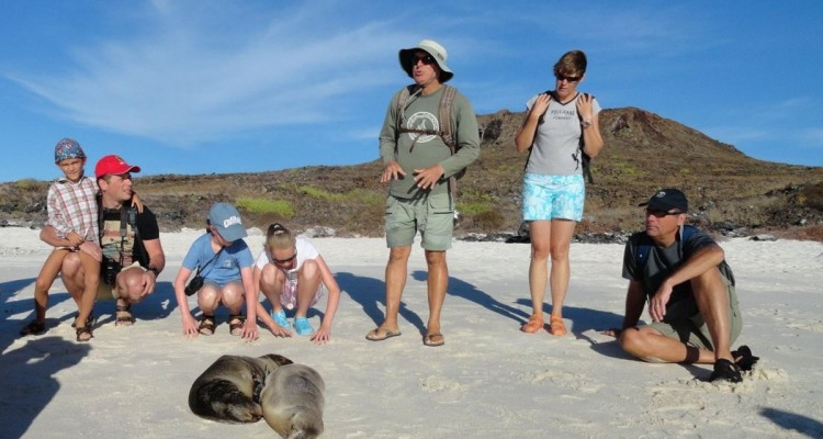 highlights-galapagos-family-sealions-on-beach-bkgrnd