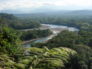 tena-upper-amazon-basin